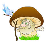 Mushroom cartoon Royalty Free Stock Images