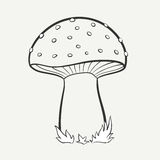 Mushroom. Cartoon black and white hand-drawn image of a spotted mushroom. Vector graphics Vector Illustration