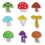 Mushroom Cartoon Illustration. Vector illustration of various mushroom Stock Images
