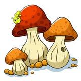 Mushroom and caterpillar Royalty Free Stock Photography