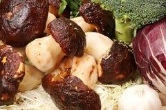 Mushroom – cep Royalty Free Stock Image