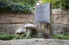 Mushroom chair outside the Crystal Shrine Grotto Royalty Free Stock Photo