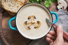 Mushroom champignon soup with toast close-up on grey concrete table. View from above. Delicious mushroom champignon soup with toast close-up on grey concrete royalty free stock photos