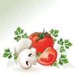 Mushroom champignon and tomatoes. Stock Photo