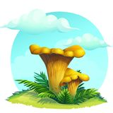 Mushroom chanterelle on the grass under the sky with clouds Stock Photography