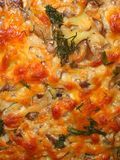 Mushroom and cheese pie Stock Photos