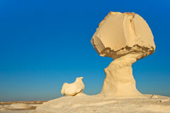 Mushroom and chicken rock. Rock formation in the White Desert, Egypt Stock Image