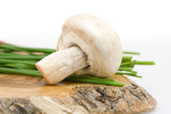 Mushroom with chive Royalty Free Stock Image