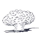 Mushroom cloud from the atomic bombing. Vector illustration Royalty Free Stock Photo