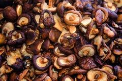Mushroom component of Thai cuisine. Royalty Free Stock Photos
