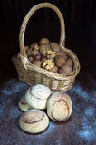 Mushroom Cookies Stock Images