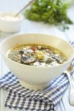 Mushroom cream soup Royalty Free Stock Images