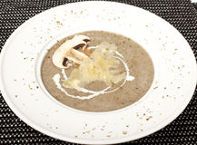 Mushroom cream soup Stock Images