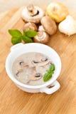 Mushroom cream soup Stock Photography