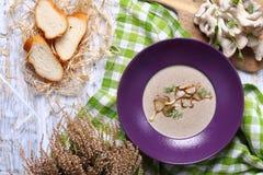 Mushroom cream soup with dill Stock Photos
