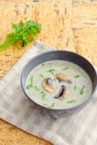 Mushroom cream soup. Homemade mushroom cream soup with parsley Stock Photography