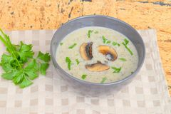 Mushroom cream soup. Homemade mushroom cream soup with parsley Royalty Free Stock Image