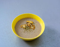 Mushroom cream soup Royalty Free Stock Image