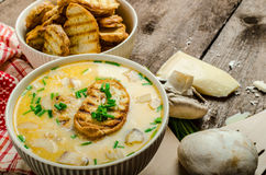 Mushroom creame soup with herbs and toasts Royalty Free Stock Photography