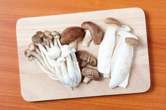 Mushroom on the cutting board Royalty Free Stock Photos