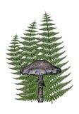 Mushroom - 3D render Stock Photo