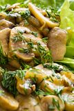 Mushroom with dill. Mushroom meal with salad and dill Royalty Free Stock Photo
