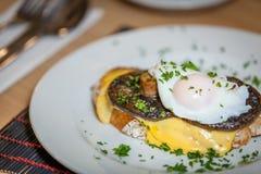 Mushroom Egg Benedict sandwich Stock Photos