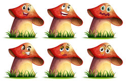 Mushroom expression Royalty Free Stock Photography