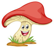 A mushroom with face Royalty Free Stock Photo