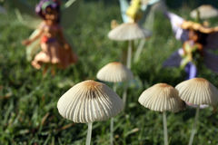 Mushroom Fairies Royalty Free Stock Photography