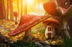 Mushroom fairy house. At the base of the tree on a sunny day Royalty Free Illustration