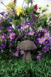 Mushroom Fantasy Background royalty free stock image