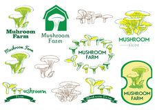 Mushroom Farm Icon, Logo and Vector Badge. For any purpose such as food product, food industry, etc. EPS 10 format with high res JPEG Vector Illustration