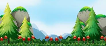 Mushroom and field Royalty Free Stock Photos