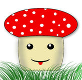 Mushroom fly-agaric Stock Images