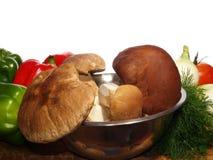Mushroom and food Stock Photo