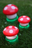 Mushroom garden Royalty Free Stock Image