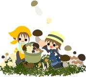 Mushroom gathering Stock Images