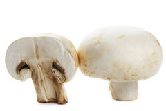 Mushroom and a half Royalty Free Stock Image