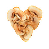 Mushroom heart Stock Image