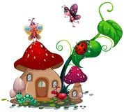 Mushroom house with many insects Royalty Free Stock Photo