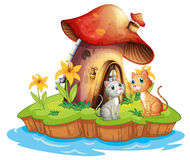 A mushroom house with two cats Stock Photo