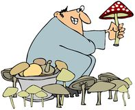 Mushroom hunter Stock Photography