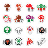 Mushroom  icons set Stock Photo