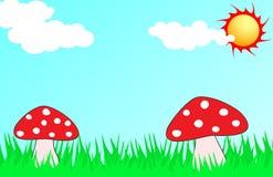 Mushroom Illustration Stock Photo