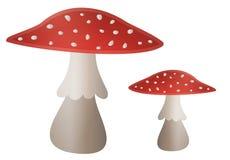 Mushroom Illustration - Amanita muscaria Stock Image