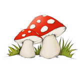 Mushroom. Illustration of two mushrooms (fly agaric Royalty Free Stock Image