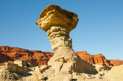 The Mushroom - Ischigualasto Provincial Park - Argentina Stock Images