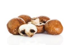 Mushroom  isolated on white background. vegetable food Royalty Free Stock Photography