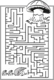 Mushroom labyrinth, maze. Stock Photo